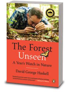 paperback3D